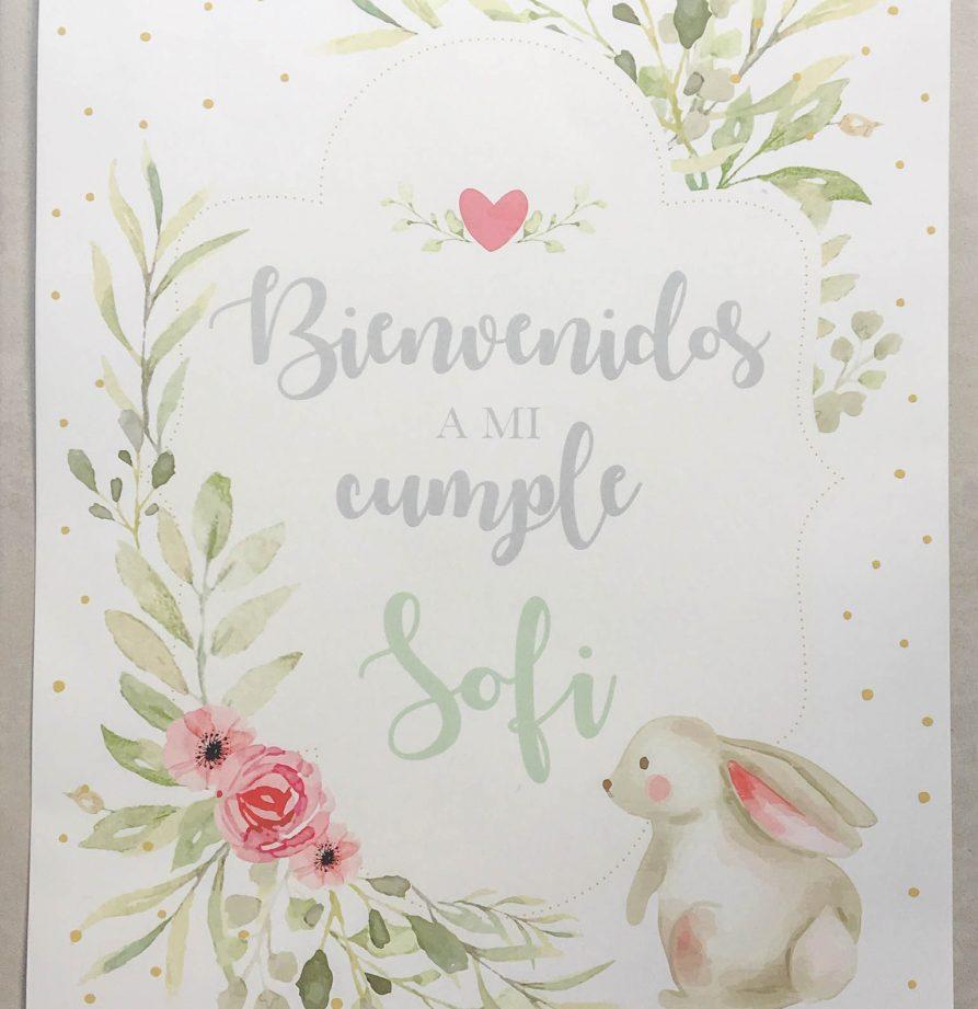 """Cumple """"Bunny"""""""