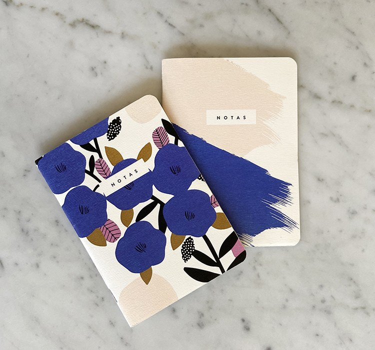 Set de 2 mini Notebooks blue